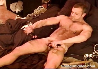pumped up bear punishes his own balls with